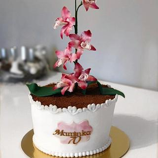 Cymbidium orchid cake - Cake by Silvia Gundová
