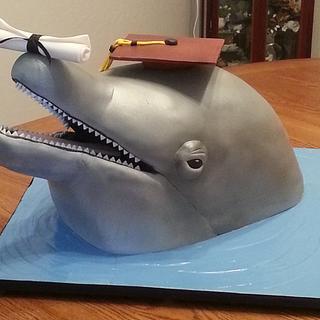 Dolphin Graduation Cake