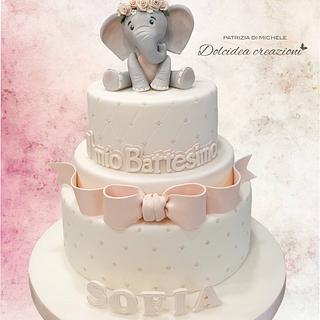 A cute baby Elephant