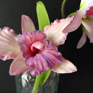 Orquídea  en pasta de goma
