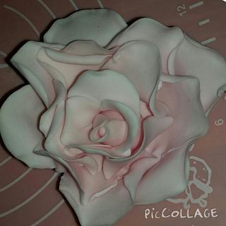 Gumpaste Large Rose