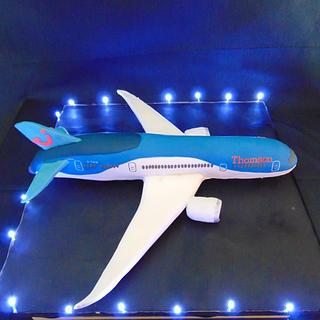 Boeing 787 Dreamliner cake