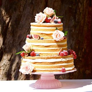 The Naked Cake by Judith Walli, Judith und die Torten