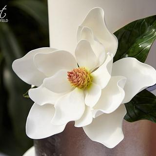 Sugar Flower - Southern Magnolia