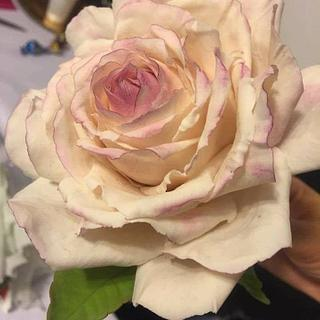 Rose - Cake by Ileana Zoltani