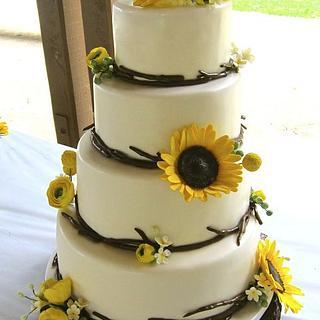 Modern Rustic Wedding Cake