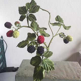 Gumpaste blackberries