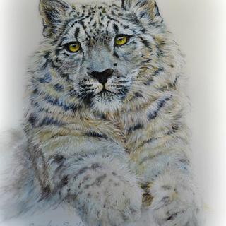Snow Leopard - Spectacular Pakistan