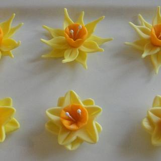 Daffodil using 2 kinds of cutters