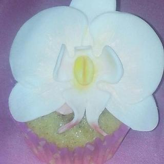 cupcake orchidée  - Cake by lafeeinthecake