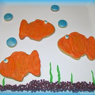 Fish & Bubbles