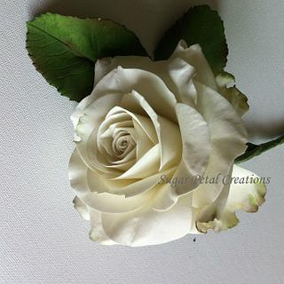 Sugar Avalanche Rose  - Cake by Anne Cutajar-Wagner