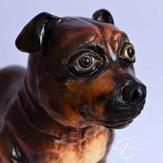 3d dog - Cake by Mariya Gechekova