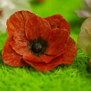 Waferpaper poppy