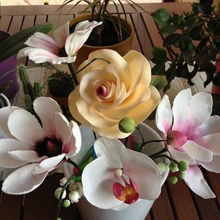 Fiori, fiori ed ancora fiori... la mia passione!