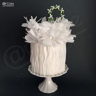 mimosa  - Cake by maria antonietta motta - arcake -