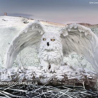 Cielo - Snowy Owl Cake/ Cake Sculpture