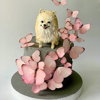 Cute pom-pom
