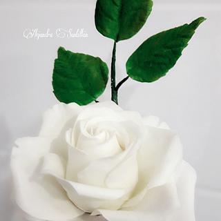 Rosa Blanca  de azúcar 😍
