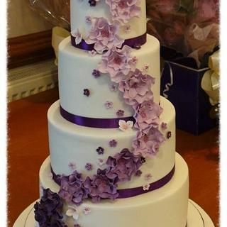 Lilac & Purple blossoms