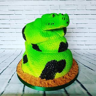 Ssssnake  - Cake by Jennifer-You cake
