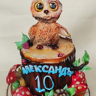 Owl cake - Cake by Tanya Shengarova