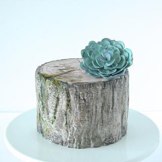 Tree Bark Cake - Cake by Cookie Hound!