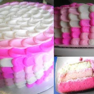 Ombre Cake & Icing