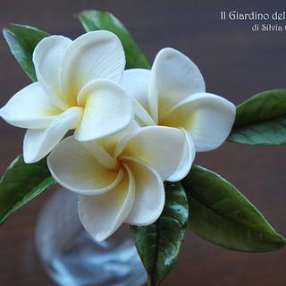 Plumeria Flowers - Cake by Silvia Costanzo
