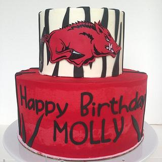Arkansas Razorbacks Birthday Cake