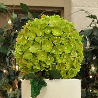 Christine's Hydrangea Wedding
