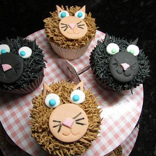 Cute cat cupcakes