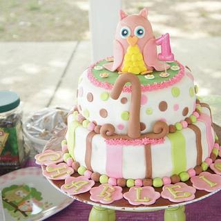 Owl First Birthday Cake and smash cake - Cake by Dejah84