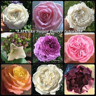 My Sugar flower Tutorials