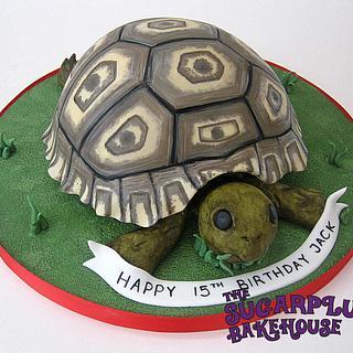 Leopard Tortoise Cake