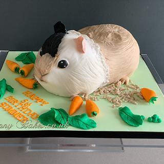 Guinea Pig cake - Cake by Penny Sue