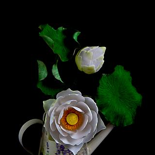 Gumpaste Lotus (complete version)