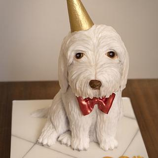 Party Pup - Cake by Kasserina Cakes