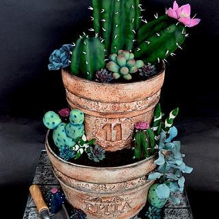 Cactus pot cake