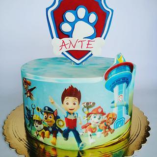 Paw patrol  - Cake by Tortebymirjana