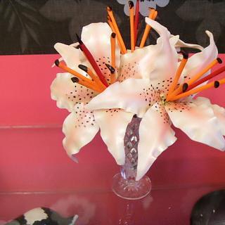 Asian (Stargazer) Lillies