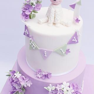 Little Lamb first Birthday cake