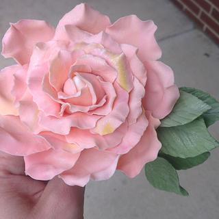 Simple rose - Cake by Galin Genov