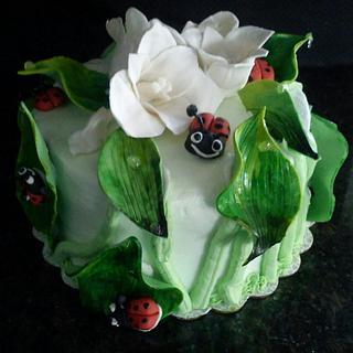 Lady bug cake - Cake by Araina