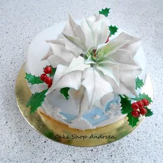 white poinsettia cake
