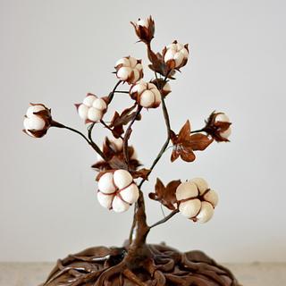 Cotton Plant Wedding Cake