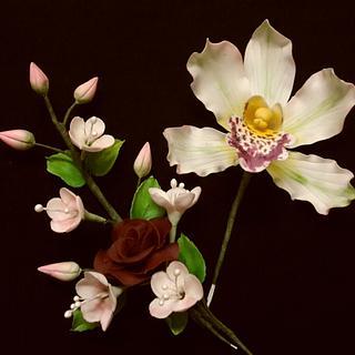 orchid n flowers