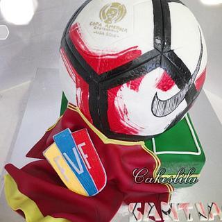 Copa America 2016 Soccer ball