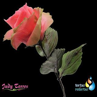 Rosa Rosa - Cake by JUDY ESPERANZA TORRES BERNAL