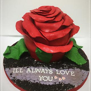 Modeling Chocolate Rose Cake